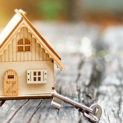 Accommodation and Real estate
